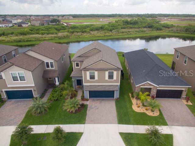 10031 Sage Creek Drive, Ruskin, FL 33573 (MLS #T3180556) :: Medway Realty