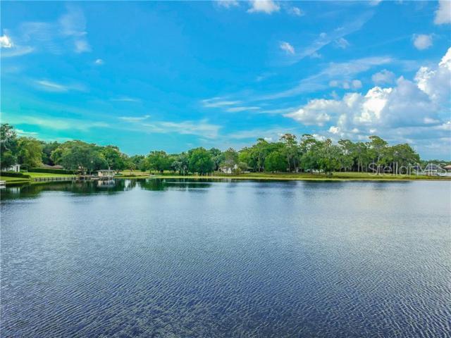 2531 N Habana Place, Tampa, FL 33618 (MLS #T3180574) :: Delgado Home Team at Keller Williams