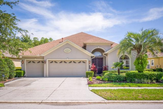 8343 Old Town Drive, Tampa, FL 33647 (MLS #T3180589) :: Team Bohannon Keller Williams, Tampa Properties