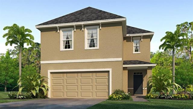 6619 Seaway Drive, Brooksville, FL 34601 (MLS #T3180593) :: Burwell Real Estate