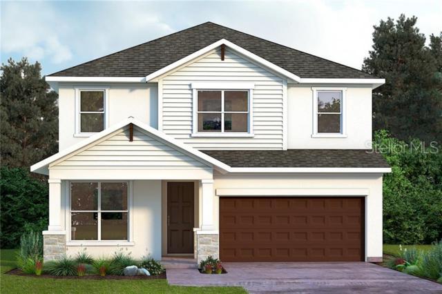 310 N Lauber Way, Tampa, FL 33609 (MLS #T3180599) :: Dalton Wade Real Estate Group