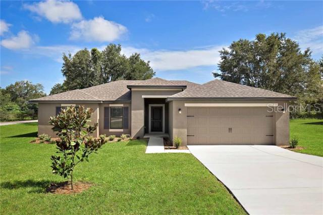 26461 Frampton Avenue, Brooksville, FL 34602 (MLS #T3180610) :: The Duncan Duo Team