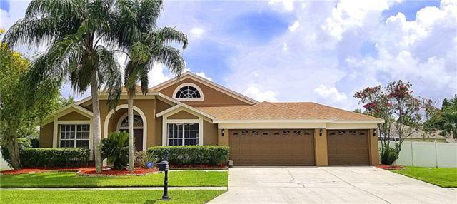 17926 Sparrows Nest Drive, Lutz, FL 33558 (MLS #T3180614) :: Paolini Properties Group
