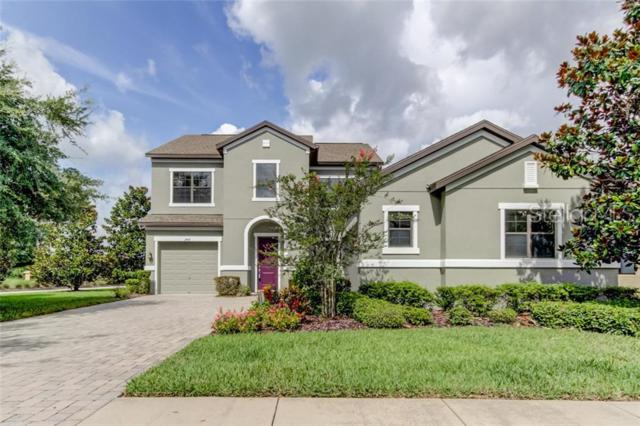 3407 Majestic View Drive, Lutz, FL 33558 (MLS #T3180617) :: The Duncan Duo Team