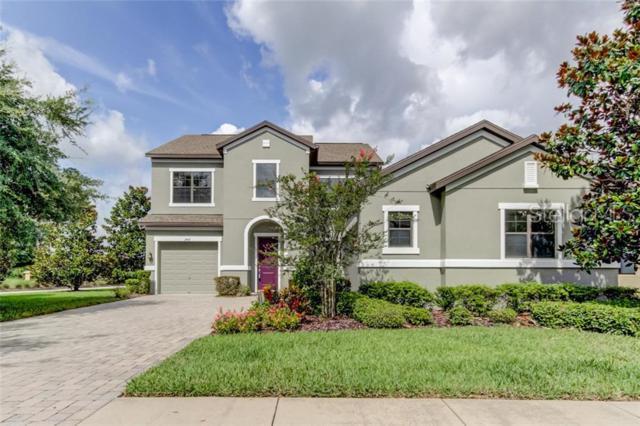 3407 Majestic View Drive, Lutz, FL 33558 (MLS #T3180617) :: Paolini Properties Group