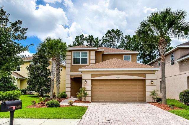 16004 Bella Woods Drive, Tampa, FL 33647 (MLS #T3180630) :: The Duncan Duo Team