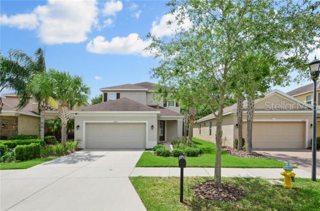 16041 Bella Woods Drive, Tampa, FL 33647 (MLS #T3180641) :: The Duncan Duo Team