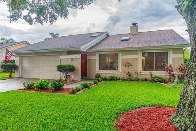 5827 Silver Moon Avenue, Tampa, FL 33625 (MLS #T3180645) :: Cartwright Realty