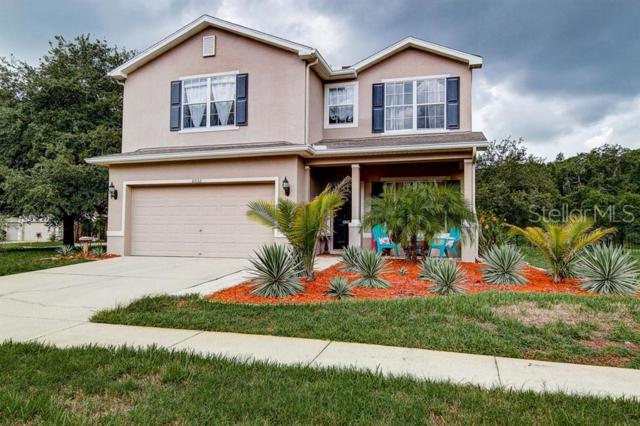 6053 Everlasting Place, Land O Lakes, FL 34639 (MLS #T3180710) :: Godwin Realty Group