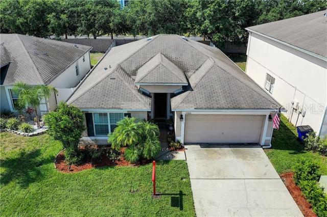17050 Odessa Drive, Land O Lakes, FL 34638 (MLS #T3180733) :: Dalton Wade Real Estate Group