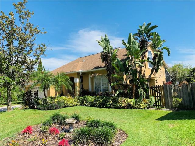 6208 Forrestal Drive, Tampa, FL 33625 (MLS #T3180746) :: The Edge Group at Keller Williams