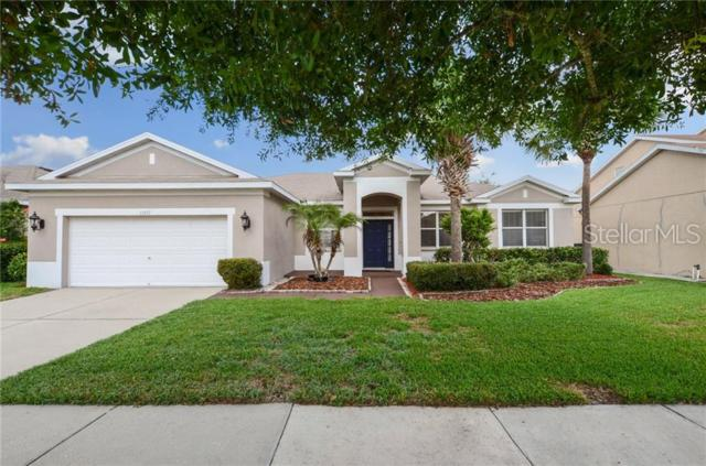 11812 Holly Creek Drive, Riverview, FL 33569 (MLS #T3180766) :: The Duncan Duo Team