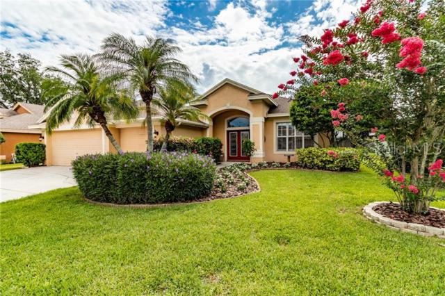 385 Knight Drive, Tarpon Springs, FL 34688 (MLS #T3180772) :: Rabell Realty Group