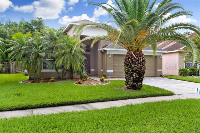 4620 Mapletree Loop, Wesley Chapel, FL 33544 (MLS #T3180780) :: GO Realty