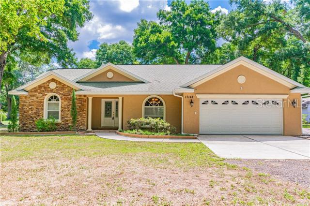 17148 Spring Valley Road, Dade City, FL 33523 (MLS #T3180785) :: Rabell Realty Group