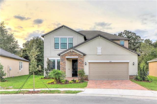4527 Coachford Drive, Wesley Chapel, FL 33543 (MLS #T3180793) :: Team Bohannon Keller Williams, Tampa Properties