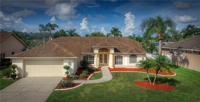 1378 Haverhill Drive, Trinity, FL 34655 (MLS #T3180821) :: RE/MAX CHAMPIONS