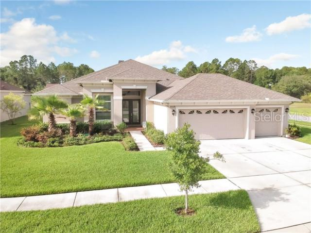 27128 Sora Boulevard, Wesley Chapel, FL 33544 (MLS #T3180827) :: Charles Rutenberg Realty