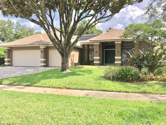 6316 Chauncy Street, Tampa, FL 33647 (MLS #T3180831) :: Cartwright Realty