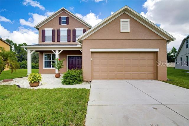 23048 Wood Violet Court, Land O Lakes, FL 34639 (MLS #T3180861) :: Cartwright Realty