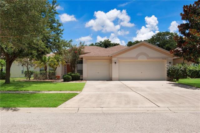 7308 Carrington Oaks Lane, Apollo Beach, FL 33572 (MLS #T3180878) :: Medway Realty