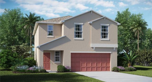 14865 Crescent Rock Drive, Wimauma, FL 33598 (MLS #T3180935) :: The Light Team