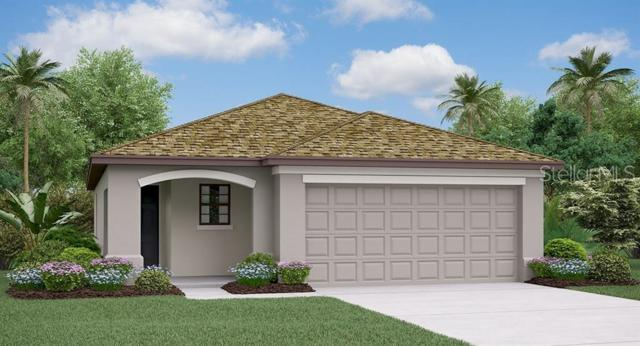 5003 Sable Chime Drive, Wimauma, FL 33598 (MLS #T3180945) :: The Duncan Duo Team