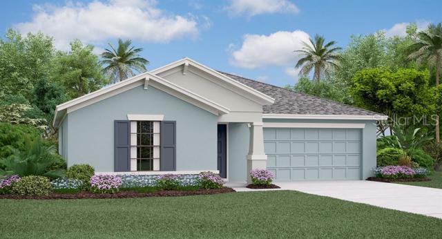 10507 Carloway Hills Drive, Wimauma, FL 33598 (MLS #T3180949) :: The Duncan Duo Team