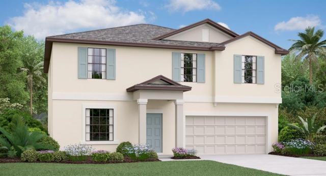 15702 Miller Creek Drive, Ruskin, FL 33573 (MLS #T3180952) :: The Duncan Duo Team