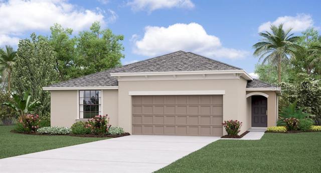 10515 Carloway Hills Drive, Wimauma, FL 33598 (MLS #T3180955) :: The Light Team