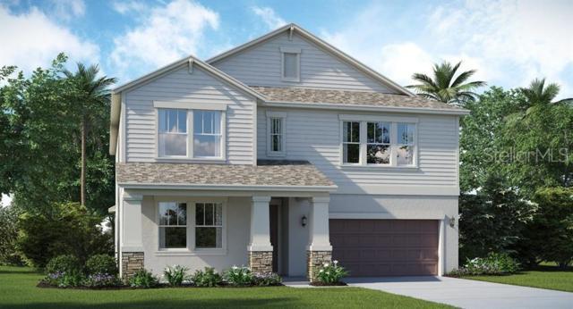 9828 Sage Creek Drive, Ruskin, FL 33573 (MLS #T3180979) :: The Duncan Duo Team