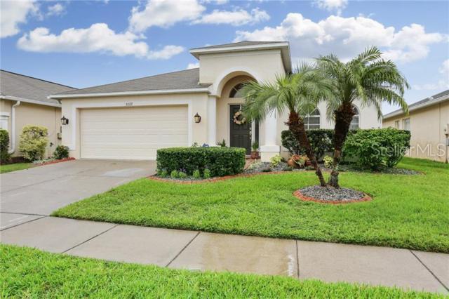 31127 Whinsenton Drive, Wesley Chapel, FL 33543 (MLS #T3180993) :: Team Bohannon Keller Williams, Tampa Properties
