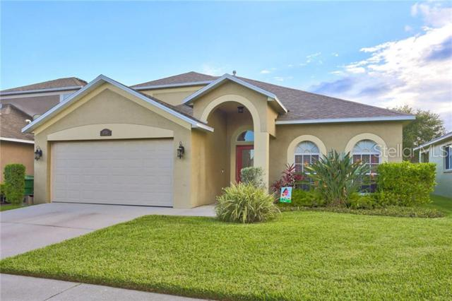 1753 Lady Palm Court, Trinity, FL 34655 (MLS #T3180997) :: Griffin Group
