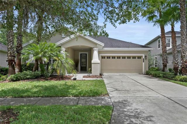20068 Heritage Point Drive, Tampa, FL 33647 (MLS #T3180998) :: Team Bohannon Keller Williams, Tampa Properties