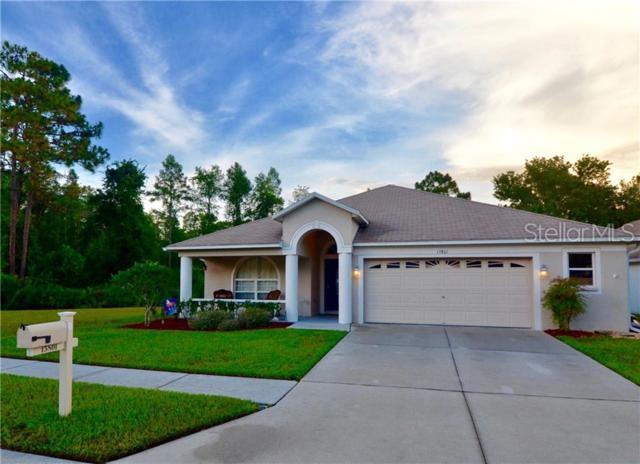 15801 Leatherleaf Lane, Land O Lakes, FL 34638 (MLS #T3181005) :: Sarasota Home Specialists