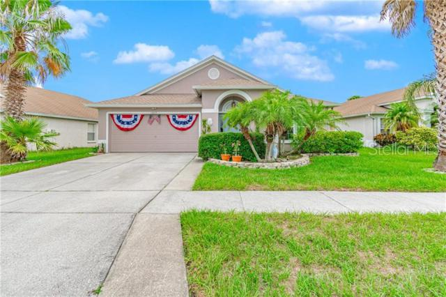 10515 Goldwater Lane, Riverview, FL 33578 (MLS #T3181009) :: The Light Team
