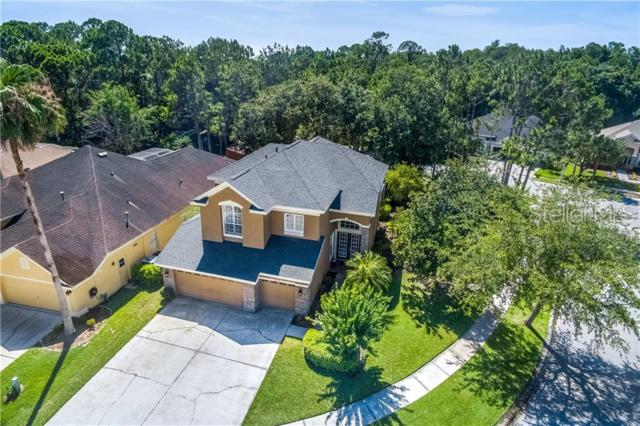 10474 Greendale Drive, Tampa, FL 33626 (MLS #T3181026) :: Bridge Realty Group