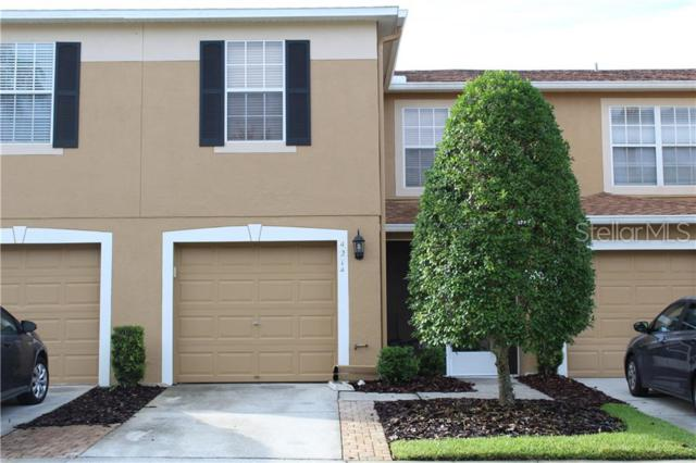 4214 Winding River Way, Land O Lakes, FL 34639 (MLS #T3181045) :: Paolini Properties Group
