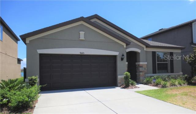 9025 Mountain Magnolia Drive, Riverview, FL 33578 (MLS #T3181119) :: White Sands Realty Group