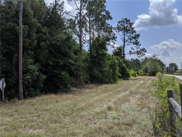 Sumner Lake Road, Dade City, FL 33525 (MLS #T3181123) :: White Sands Realty Group