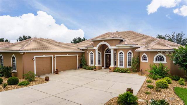 12852 Grand Traverse Drive, Dade City, FL 33525 (MLS #T3181170) :: Team Bohannon Keller Williams, Tampa Properties