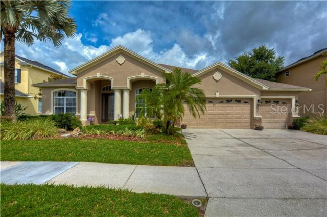 3400 Marble Crest Drive, Land O Lakes, FL 34638 (MLS #T3181194) :: Dalton Wade Real Estate Group