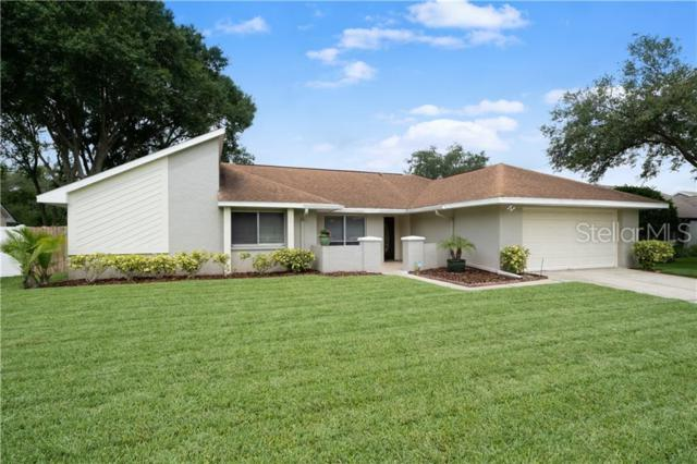 Address Not Published, Tampa, FL 33624 (MLS #T3181211) :: The Duncan Duo Team