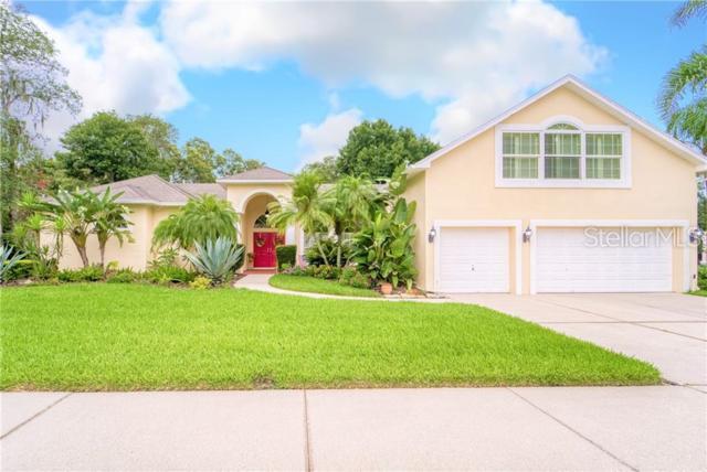 2534 Centennial Falcon Drive, Valrico, FL 33596 (MLS #T3181226) :: Griffin Group