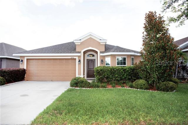 10910 Standing Stone Drive, Wimauma, FL 33598 (MLS #T3181242) :: The Duncan Duo Team