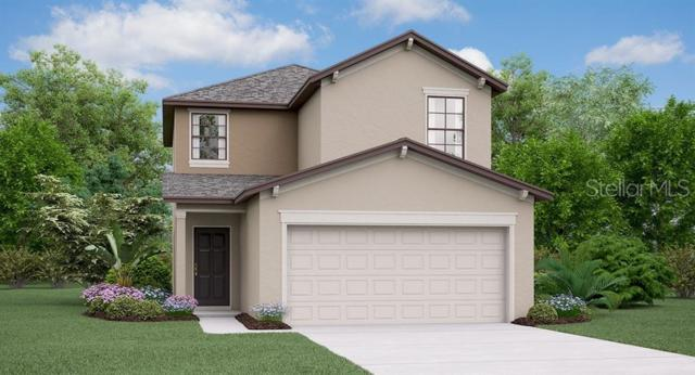 7418 French Marigold Avenue, Tampa, FL 33619 (MLS #T3181245) :: Cartwright Realty
