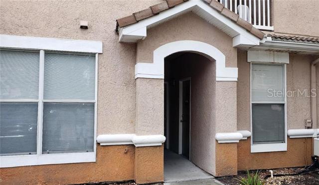 17977 Villa Creek Drive #17977, Tampa, FL 33647 (MLS #T3181281) :: Medway Realty