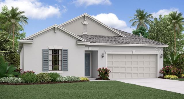9093 Shadyside Lane, Land O Lakes, FL 34637 (MLS #T3181295) :: Dalton Wade Real Estate Group