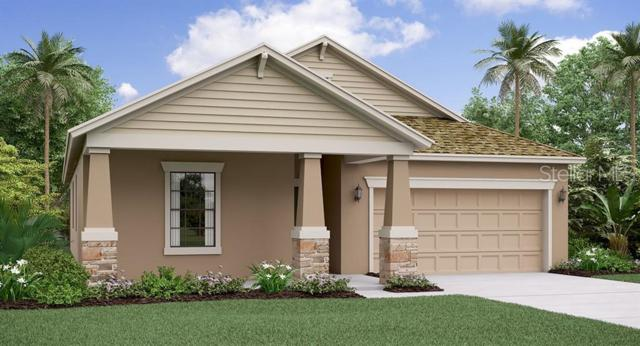 9077 Shadyside Lane, Land O Lakes, FL 34637 (MLS #T3181296) :: Dalton Wade Real Estate Group