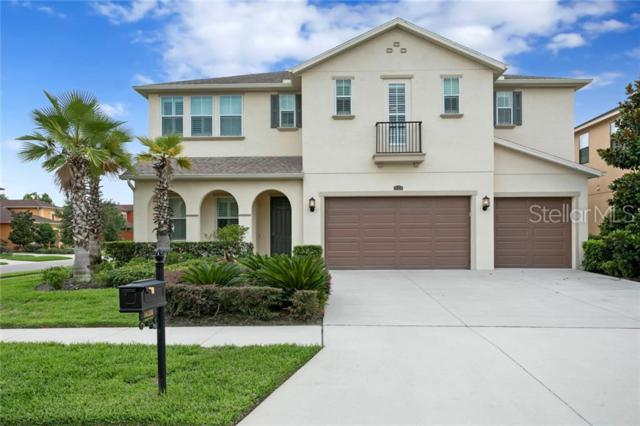 14316 Avon Farms Drive, Tampa, FL 33618 (MLS #T3181311) :: Team 54